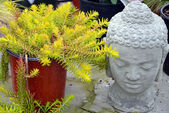 Decorative garden buddha — Stock Photo