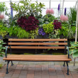 Stock Photo: Greenhouse garden bench