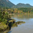 Fraser River in British Columbia, Canada — Stock Photo