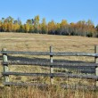 Ranch landscape in autumn — Stock Photo