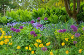 Pacific northwest spring garden — Stock Photo