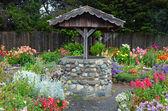 Wishing well in dahlia garden — Stock Photo