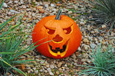 Carved pumpkin in rock garden — Stock Photo
