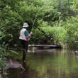Stream fishing — Stock Photo
