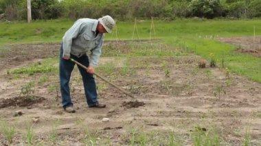 El kültivatör — Stok video