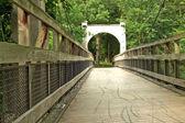 Swinging bridge — Stock Photo