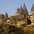 Stock Photo: Imposing Chaturbhuj Temple