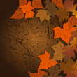 Leaf, autumn - vector background — Stock Vector #13272610