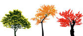 Set of real colorful autumn tree collection — Stock Vector