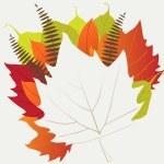Leaf, autumn - vector background — Stock Vector #13714182