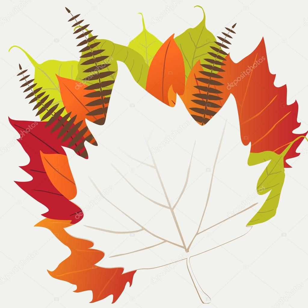 Leaf, autumn - vector background — Stock Vector #13714182
