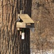 Feeder, winter in urban park — Stock Photo
