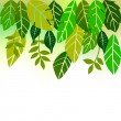 Leaves, collection for designers — Image vectorielle
