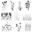 Royalty-Free Stock Vector Image: Collection for designers, plant vector
