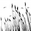 Real grass silhouette and  few dragonflies  - vector - Imagens vectoriais em stock