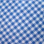 Checkered tablecloth - folk pattern — Stock Photo #29876317