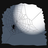 Halloween background - spider and cobweb — Stock Vector