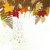 Bir alan için bir metin ile sonbahar arka plan — Stok Vektör
