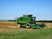 Combine harvesting crop corn grain fields — Stock Photo