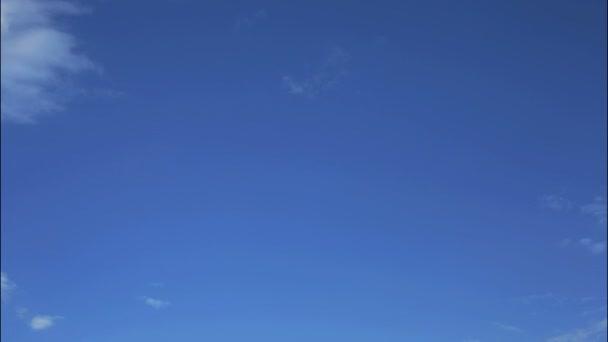 Esponjosas nubes blancas y cielo azul - hd timelapse — Vídeo de stock