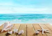 Boardwalk with shells — Stock Photo
