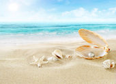 Pearl on the beach. — Stock Photo
