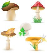 Set icons mushrooms vector illustration — Stock Vector