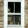 Old window with books - Stock Photo