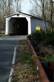 Green Sergeant's Covered Bridge — Stock Photo