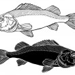 Fish graphic black and white - Stock Vector
