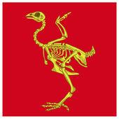 Skeleton birds — Stock Vector