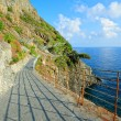 Stock Photo: Videll'Amore (Cinque Terre, Italy)
