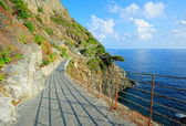 Via dell'Amore (Cinque Terre, Italy) — Stock Photo