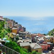 Manarola village on a hot summer day — Stock Photo