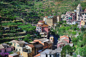 Italian mountain village Manarola — Stock Photo