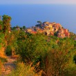 Italian village Corniglia at sunset — Stock Photo