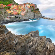 Manarola landscape in cold morning colors  — Stock Photo