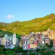 Colorful mountain village Manarola — Stock Photo