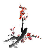 Chinese painting of plum blossom — Stock Photo