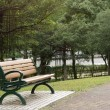 Bench in the park — Stock Photo #27471901