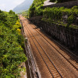 Long railroad — Stock Photo