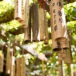 Bamboo wishing poles — Stock Photo