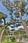Byggnad i pine garden — Stockfoto