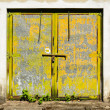 Old rusty gate — Stock Photo #31356479