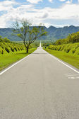 Rural landscape with road — Stock Photo