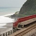 Coastline with railway — Stock Photo #31484303