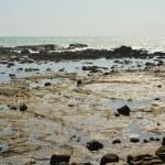 Rocky coastline — Stock Photo
