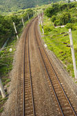 Railroad between meadow — Foto Stock