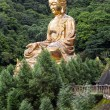 Giant copper buddha statue — Stock Photo