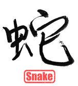 Calligraphy word, snake — Stock Photo